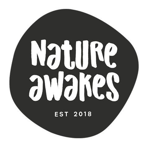 nature awakes